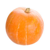 Orange pumpkin Stock Image