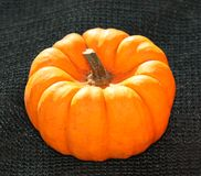 Orange Pumpkin. Royalty Free Stock Photography