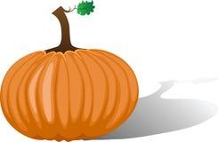Orange pumpkin. Vector illustration Royalty Free Stock Images