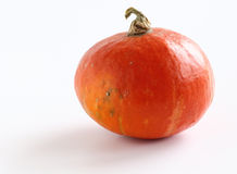 Orange pumpkin Stock Photos