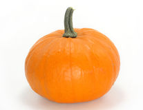 Orange pumpkin Stock Photos