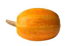 Orange pumpkin. Isolated over white Stock Photography