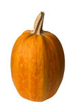 Orange pumpkin. Isolated over white Stock Images