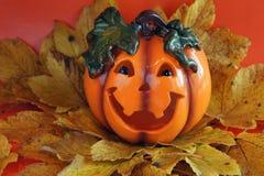 Orange pumpkin Stock Images