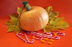 Orange pumpkin Stock Photography