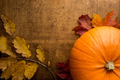 Orange pumpkin and Autumn leaves. Autumn scene with pumpkin and colourful leaves on wooden table Royalty Free Stock Images