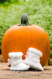 Orange pumpkin with baby shoes Stock Photo