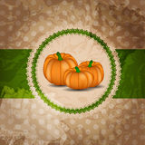 Orange Pumpkin  Background Vector Illustration Royalty Free Stock Photo