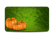 Orange Pumpkin  Background Vector Illustration Royalty Free Stock Images