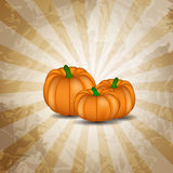 Orange Pumpkin  Background Vector Illustration Royalty Free Stock Photos