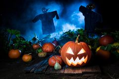 Orange pumpkin with blue mist and scarecrows for Halloween. On dark background Stock Photos