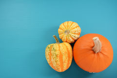 Orange pumpkin and boldly patterned squash on painted background. Orange pumpkin and boldly patterned squash on a teal blue painted wooden background with copy Stock Photography