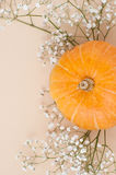 Orange pumpkin close-up sideways on a light beige pastel background and dry white flowers..