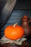 Orange pumpkin on a dark background Stock Image