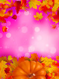Orange Pumpkin on elegant pink bokeh. EPS 8 Royalty Free Stock Photography