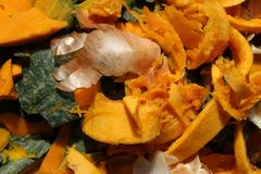 Orange pumpkin food scraps detail and onions Stock Photography