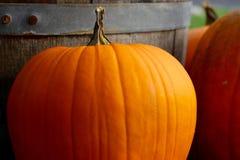Orange pumpkin in front of barrel Stock Photos