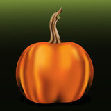 Orange pumpkin on green background Royalty Free Stock Photography