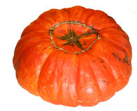 Orange pumpkin Royalty Free Stock Photo
