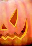The orange pumpkin in Halloween theme. 1 Royalty Free Stock Photography