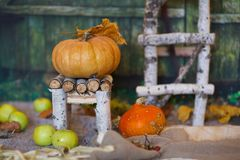 Orange pumpkin on a handmade chair. Closeup. Orange pumpkin on a birch tree wood chair. Closeup stock photography