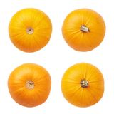 Orange pumpkin isolated Stock Photography