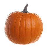 Orange Pumpkin Isolated on White Background Royalty Free Stock Photo