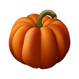 Orange pumpkin Royalty Free Stock Image