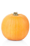 Orange pumpkin Stock Image
