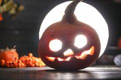 Pumpkin lantern lighting on a dark background. Orange pumpkin lantern with a scary face for halloween holiday lighting on a dark background with rowanberry next royalty free stock image