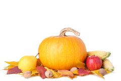 Orange pumpkin with leaves and vegetables isolated on white royalty free stock photography
