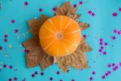 Orange pumpkin lies on blue background with leaves. Concept of autumn, Thanksgiving, Halloween. Top view. Flat lay. royalty free stock photo