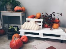 Orange Pumpkin Lot on White Pallet Board stock photo