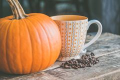 Orange Pumpkin Near White Ceramic Mug With Seeds stock image