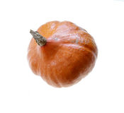 Orange pumpkin raw fresh isolated Stock Image