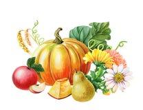 Free Orange Pumpkin,Red Apple,pear.Watercolor Illustration On White Background. Autumn Harvest.Fresh Vegetarian Food Stock Photos - 152217223