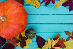 Orange pumpkin with round marrow and autumn leaves Royalty Free Stock Images