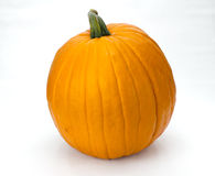 Orange pumpkin or squash on white Stock Images