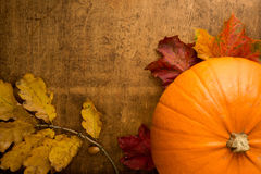 Orange pumpkin still life. Autumn scene with pumpkin and colourful leaves on wooden table Royalty Free Stock Images