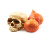 Orange pumpkin and toy skull Royalty Free Stock Photography
