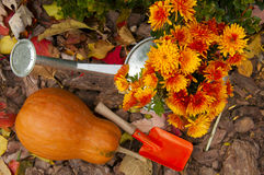 Orange pumpkin, watering can with chrysanthemums and children pa Royalty Free Stock Images