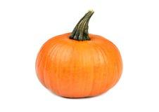 Orange pumpkin on white Royalty Free Stock Photos