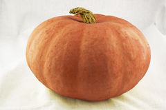 Orange pumpkin Royalty Free Stock Images