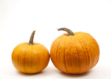 Orange pumpkins. Isolated orange pumpkins  for halloween decoration Royalty Free Stock Images