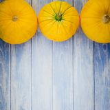 Orange pumpkins on blue wooden background Royalty Free Stock Photography