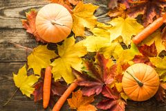 Orange pumpkins and carrots with autumn on wooden background royalty free stock photo
