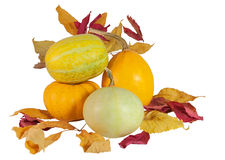 Orange pumpkins with dry leaves, isolated on white. Four orange pumpkins with fall leaves, isolated on white background Royalty Free Stock Image