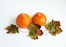 Orange pumpkins and dry leaves on white background. Some fresh orange pumpkins and dry maple leaves on white concrete background, copy space. Autumn concept stock image
