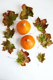 Orange pumpkins and dry leaves on white background. Some fresh orange pumpkins and dry maple leaves on white concrete background, copy space. Autumn concept stock photos