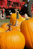 Orange pumpkins in a farm setting with red tractor stock photos